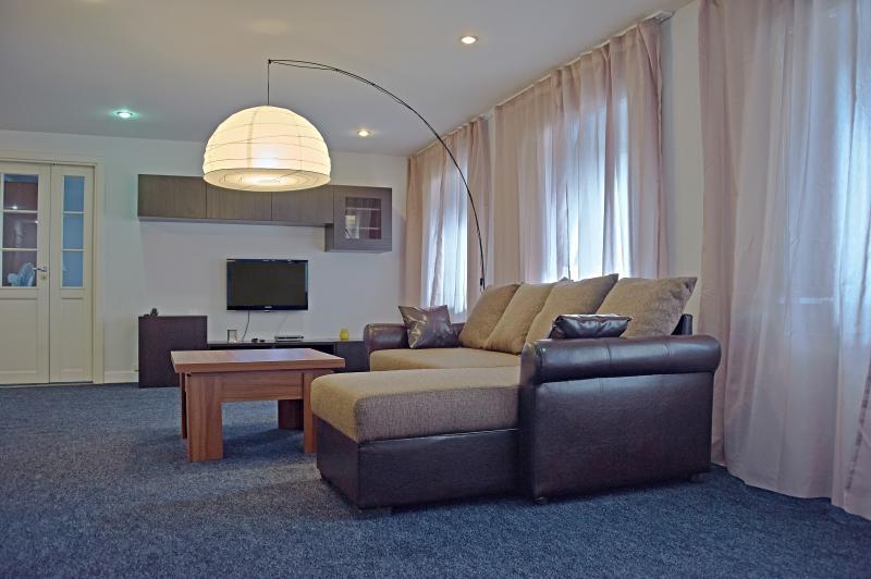 living room - Nevsky 32-3rd floor - Saint Petersburg - rentals
