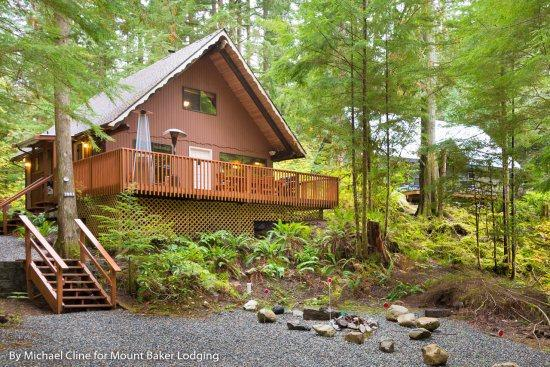 Snowline Cabin #98 - A cozy cabin with a free standing wood stove and outdoor hot tub. Now has WiFi! - Image 1 - Glacier - rentals