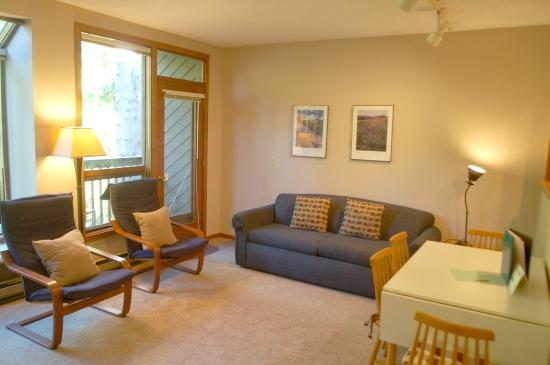 52SW - 52SW Ground Floor Condo at Mt. Baker - Glacier - rentals