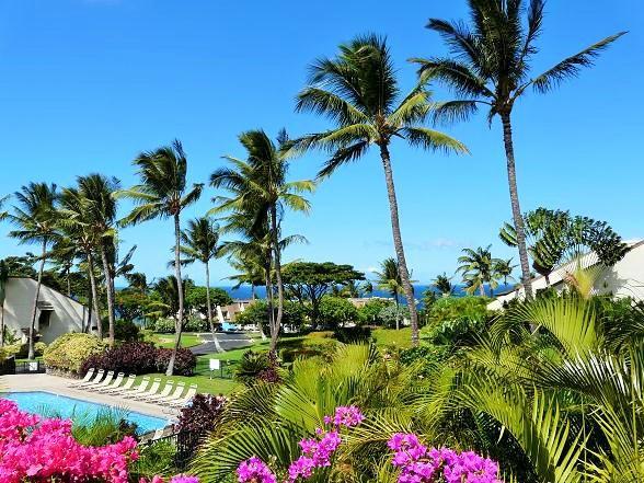 Maui Kamaole 2 Bedroom Garden View K204 - Maui Kamaole 2 Bedroom Garden View K204 - Kihei - rentals