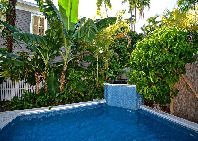 Poolside Paradise - Amazing Home 1/2 Block to Duval w/ Pool and Pvt Parking - Image 1 - Key West - rentals