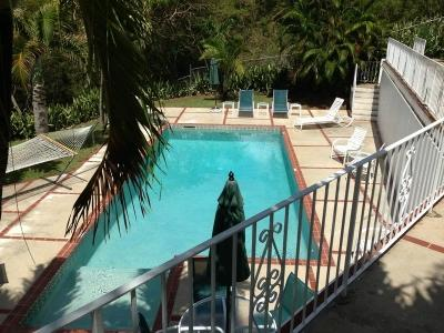 Pool Deck Area - Charming 4 Bedroom Home with Private Pool & Veranda ion St. Thomas - Charlotte Amalie - rentals