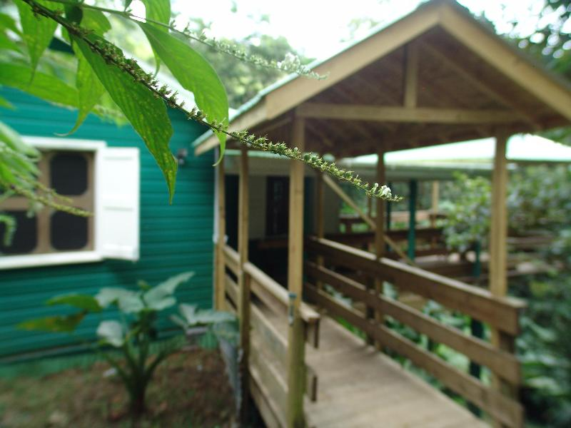 welcome to Birdwatchers - Birdwatchers Rainforest Cottage - Morne Trois Pitons National Park - rentals