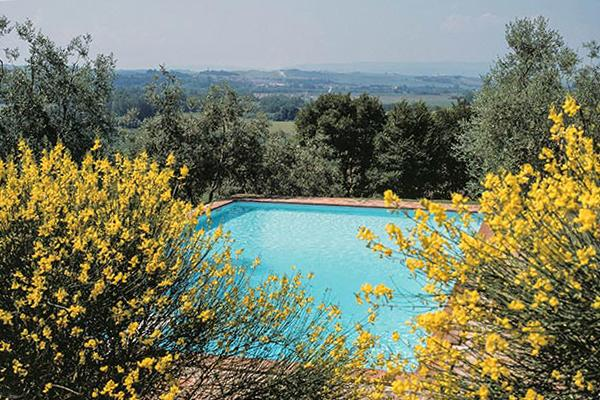 20 minutes from Siena and surrounded by an olive grove. BRV CLO - Image 1 - Siena - rentals