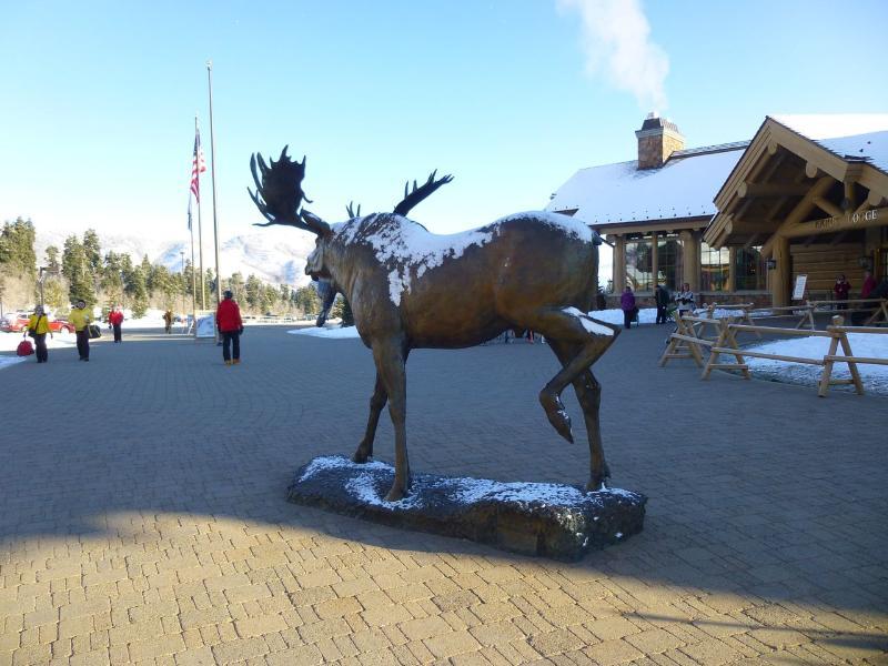 Got Moose? - Snowbasin / Powder Mountain Luxury 4+ Bed Townhome - Eden - rentals