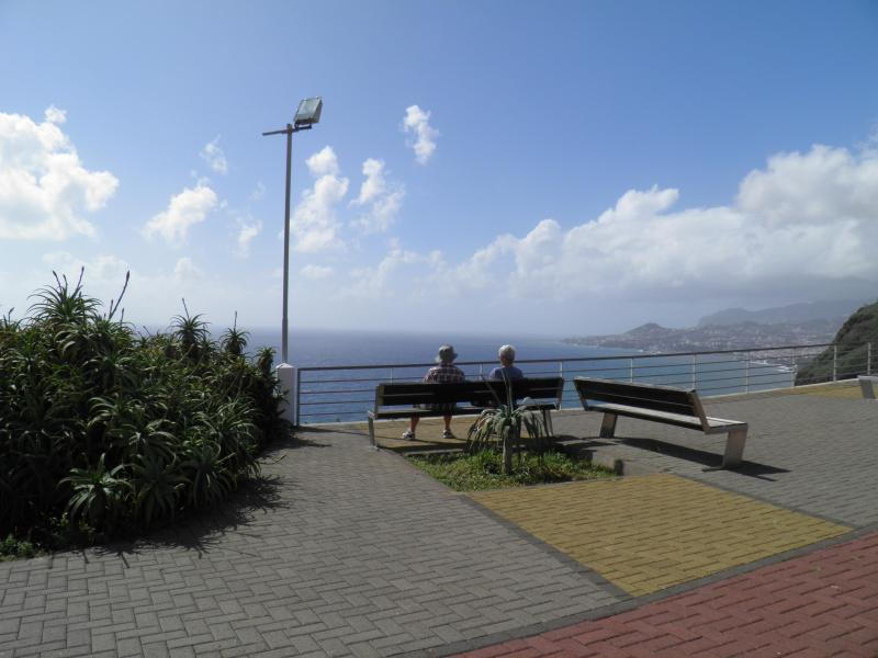 Blue Dream in Madeira Island - BBQ, Private Garden - Image 1 - Funchal - rentals