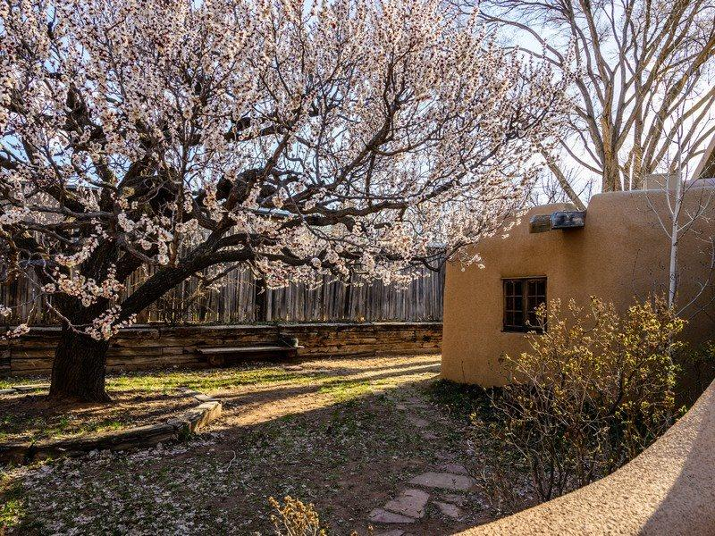 Exterior of Adobe Rose compound - Two Casitas- Adobe Rose - Quaint, Ideal for Two, East Side Bliss - Santa Fe - rentals