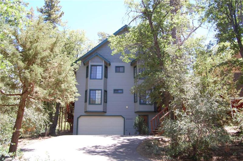 Wodehouse #1057 - Image 1 - Big Bear Lake - rentals