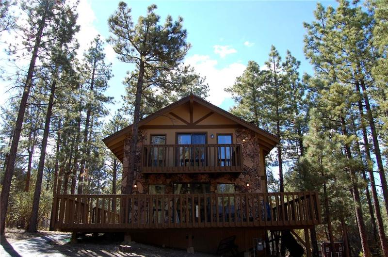 Nestled Within the Trees #1233 - Image 1 - Big Bear City - rentals