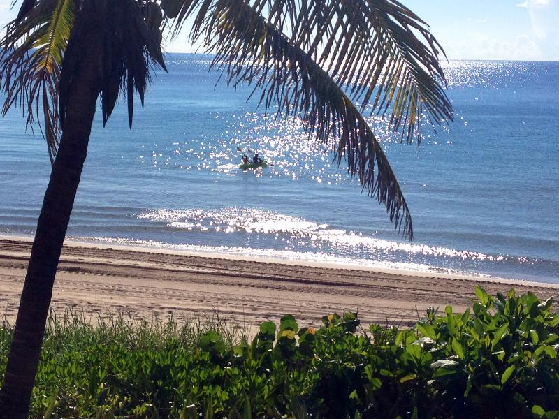 Early morning kayak adventure - Beautiful Fort Lauderdale Beach House Directly On The Sand - Fort Lauderdale - rentals