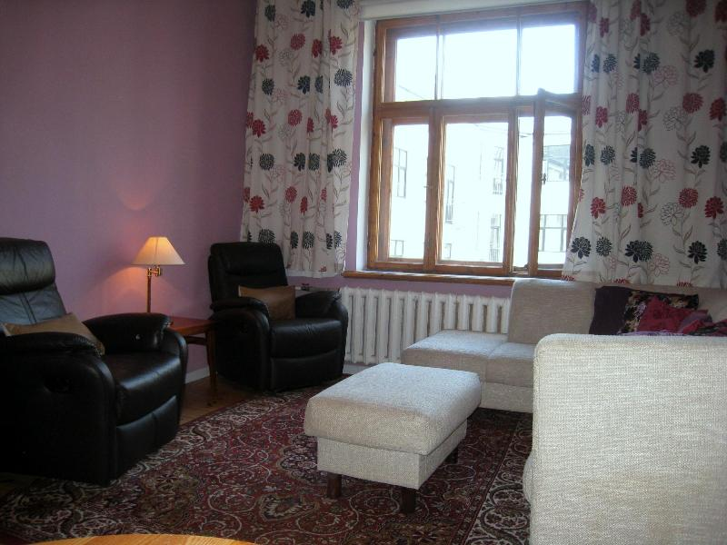 big sitting area - Lilac 1 bedroom apartment in Lacplesa atr - Riga - rentals