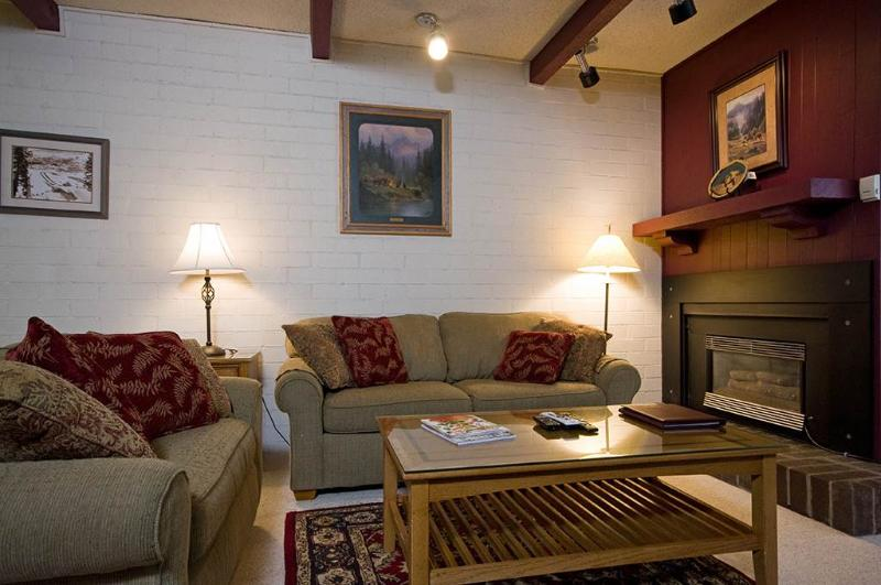 Ski Time Square - ST309 - Image 1 - Steamboat Springs - rentals