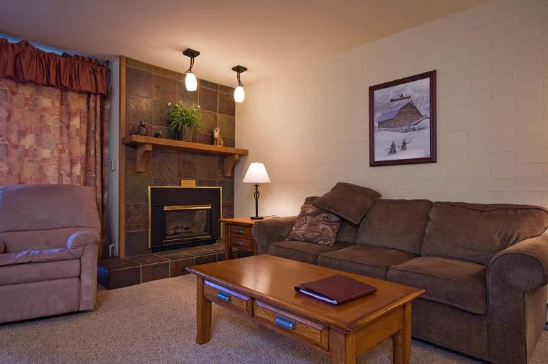 Ski Time Square - ST410 - Image 1 - Steamboat Springs - rentals