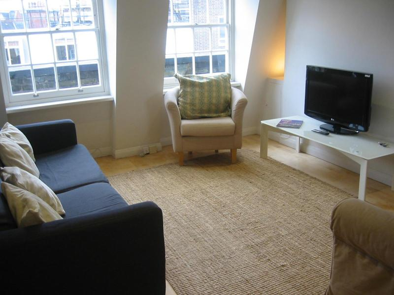 Large Comfortable Living Room - Lovely one bed apartment  in the heart of London. - London - rentals