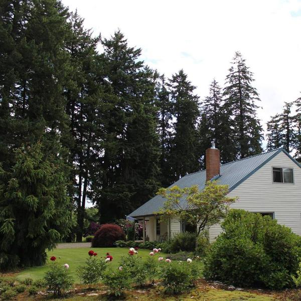 View of front of Farm House - 4 bd farmhouse resting in 40 acres of hazelnuts - Hubbard - rentals