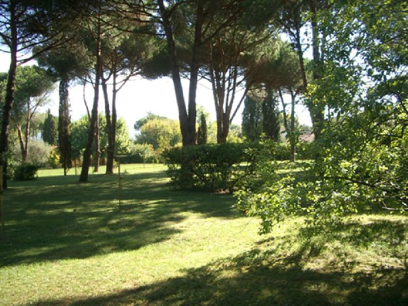 Garden - Villa Orlandini - Forte Dei Marmi - rentals
