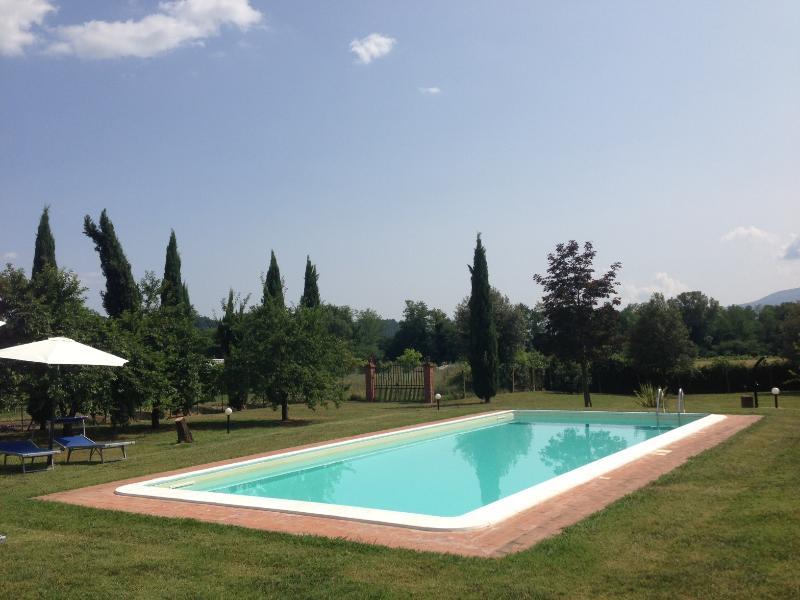Villa Giovanna - Image 1 - Capannori - rentals