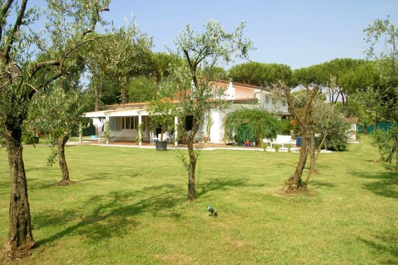 Villa Sunny - Villa Oasi - Forte Dei Marmi - rentals