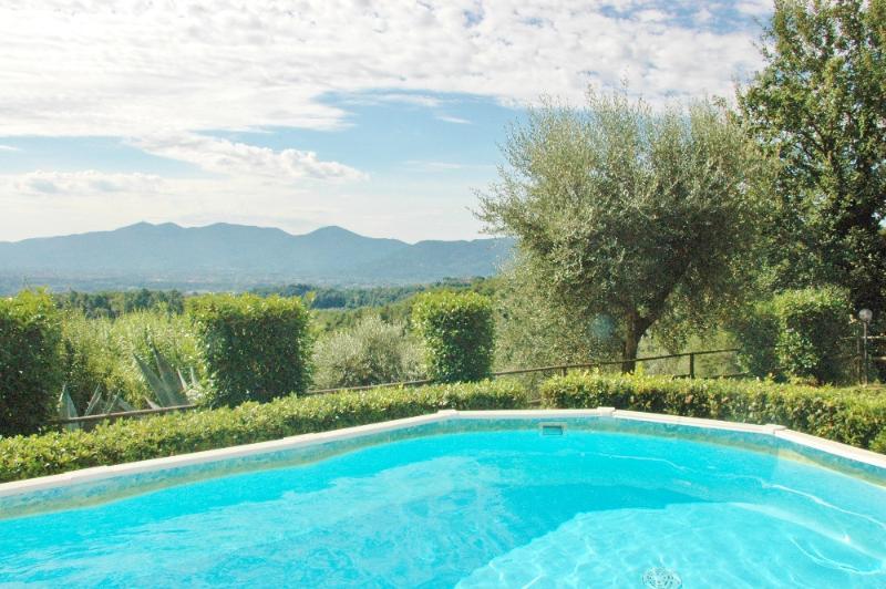 Swimming pool - Villa dell'Olivo - Lucca - rentals