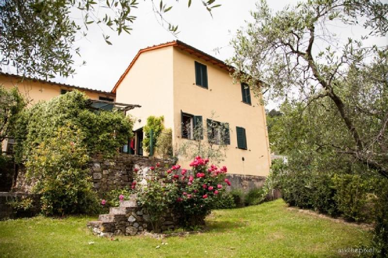 Gelsomino - Cottage Gelsomino - Lucca - rentals