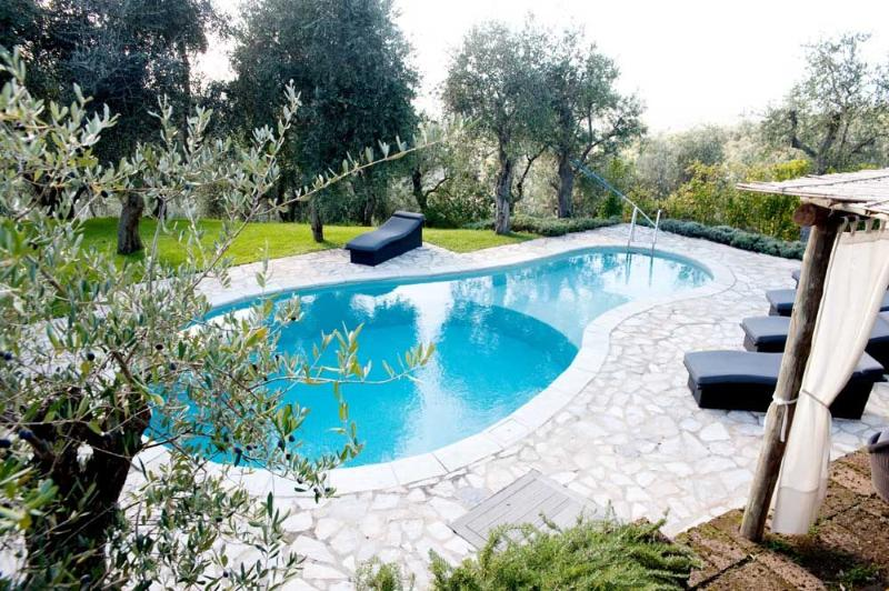 Swimming pool with view - Villa degli Artisti - Pietrasanta - rentals