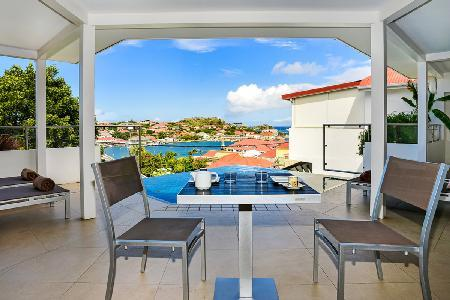 Modern 2 bedroom villa Wastra, close to town & a short walk to Shell Beach - Image 1 - Gustavia - rentals