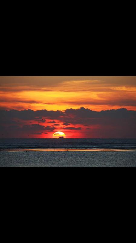 Sunrise from Balcony of our UNIT - OCEANFRONT Amelia Island FLORIDA Fernandina Beach - Fernandina Beach - rentals