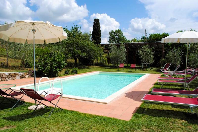 Lucignano Villa - TFR142 - Image 1 - Arezzo - rentals