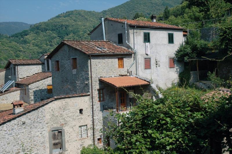 Villa Piegaio Alto near Lucca - TFR17 - Image 1 - Pescaglia - rentals