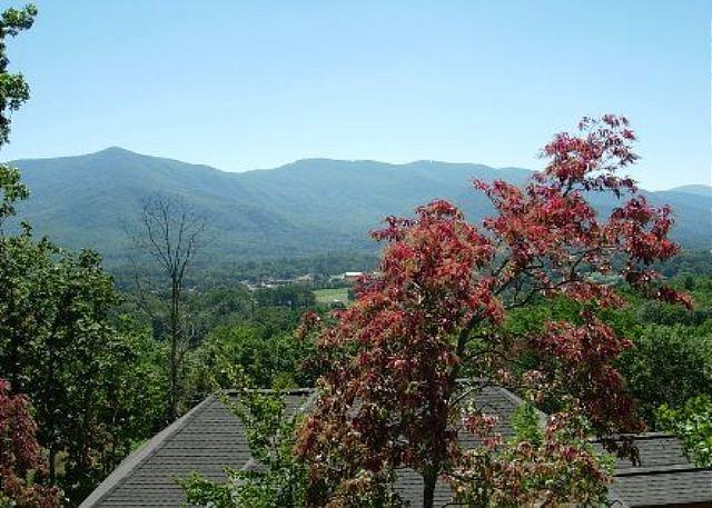 Shadowridge - Image 1 - Black Mountain - rentals