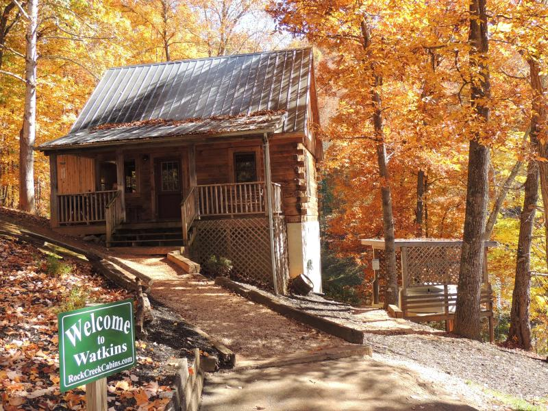 The Watkins Cabin. 2 bedroom 1 bath - Mountainside Peacefullness- The Watkins Cabin - Bryson City - rentals