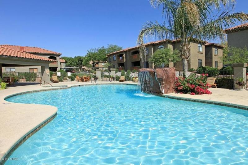 Comm Pool - Luxury Tucson Vacation Rental (MINIMUM 30 DAY STAY) - Tucson - rentals