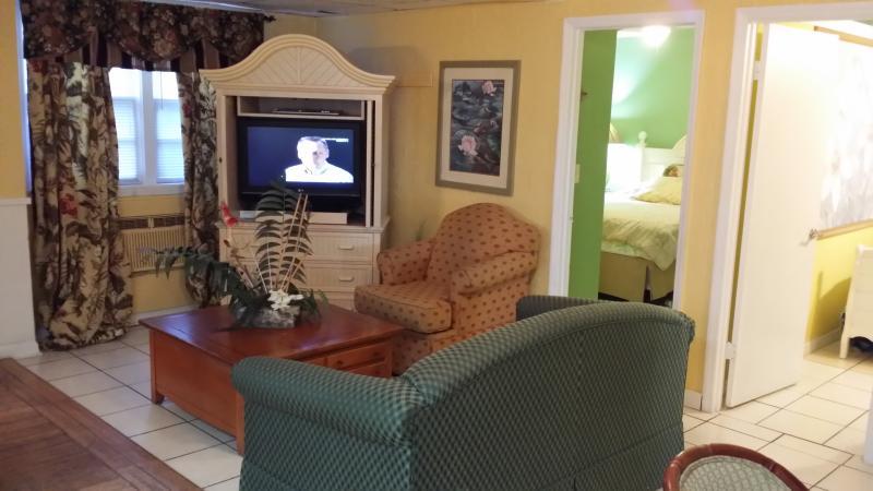 Hideaway3 bedroom  living room - Hideaway Cottage/3bedroom/5 beds/pets ok/beach - Clearwater - rentals