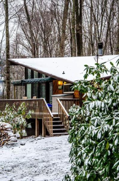 Sandy's Chalet in the Snow - Sandy's Chalet at Asheville Cabins, Willow Winds - Asheville - rentals