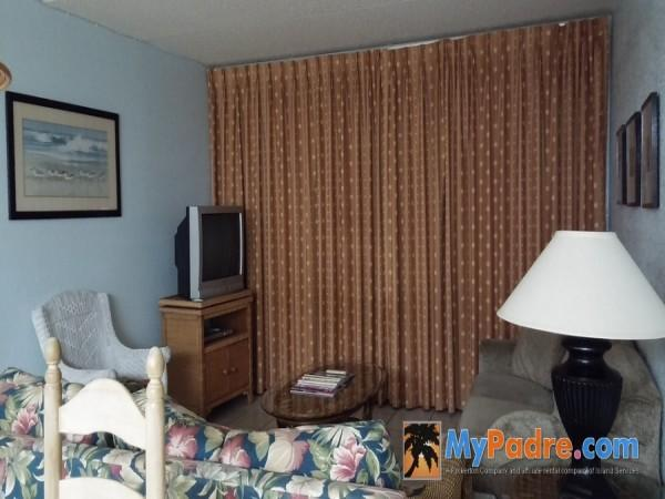 CONTINENTAL #201: 2 BED 1 BATH - Image 1 - South Padre Island - rentals