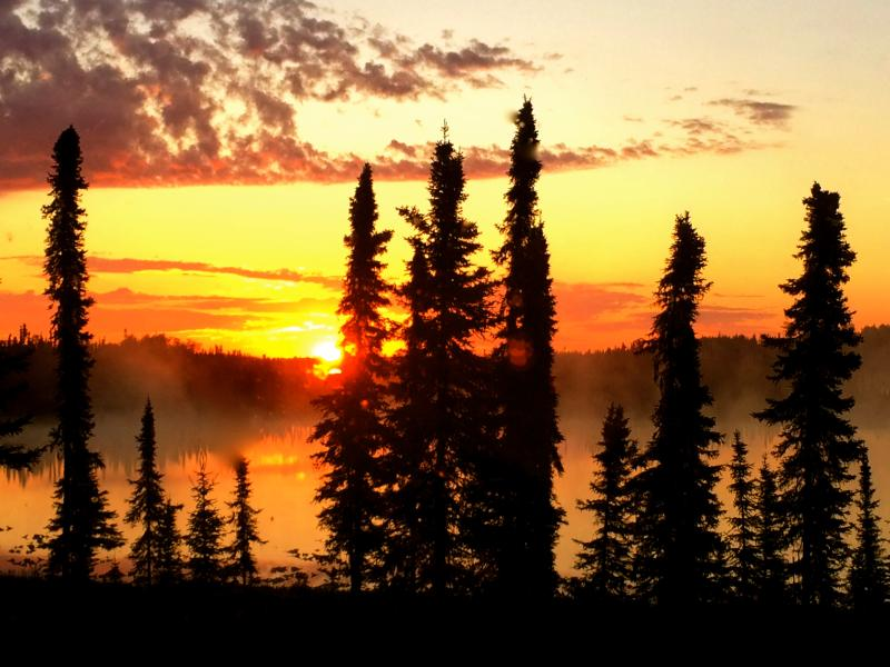 View from the front picture window of the cottage in the early morning!!! - Cottage on Private Lake in S o l d o t n a, Alaska - Soldotna - rentals