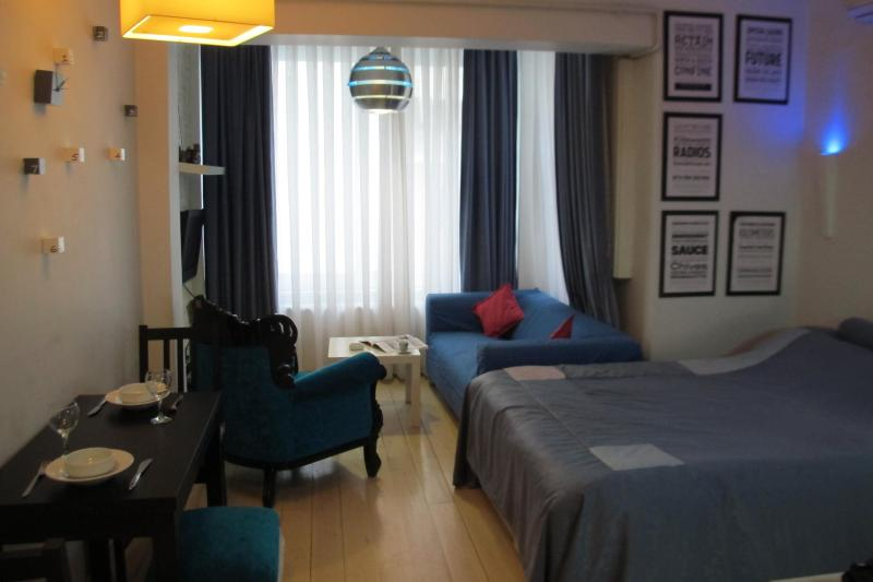 BEYOGLU STUDIO FLAT  811 - Image 1 - Istanbul - rentals