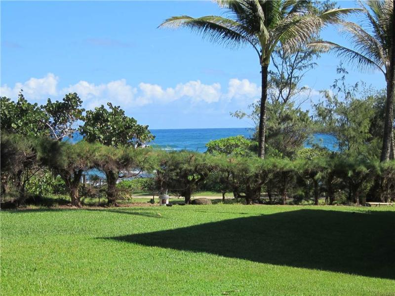 Kaha Lani Resort #129-OCEANVIEW, 2 BR, End Unit - Image 1 - Kapaa - rentals
