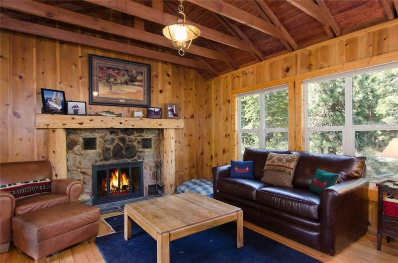 Cabin Fever - Image 1 - Tahoe City - rentals