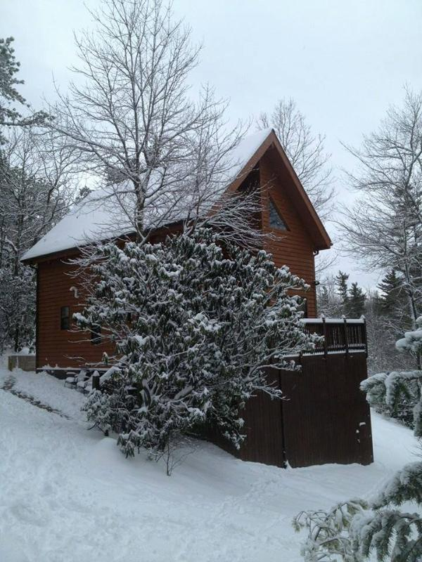 Wrapped in Winter, Our Snowy Cabin in a Winter Wonderland - NC Blue Ridge Parkway Cabin Stay 2 get 1 FREE - Blowing Rock - rentals