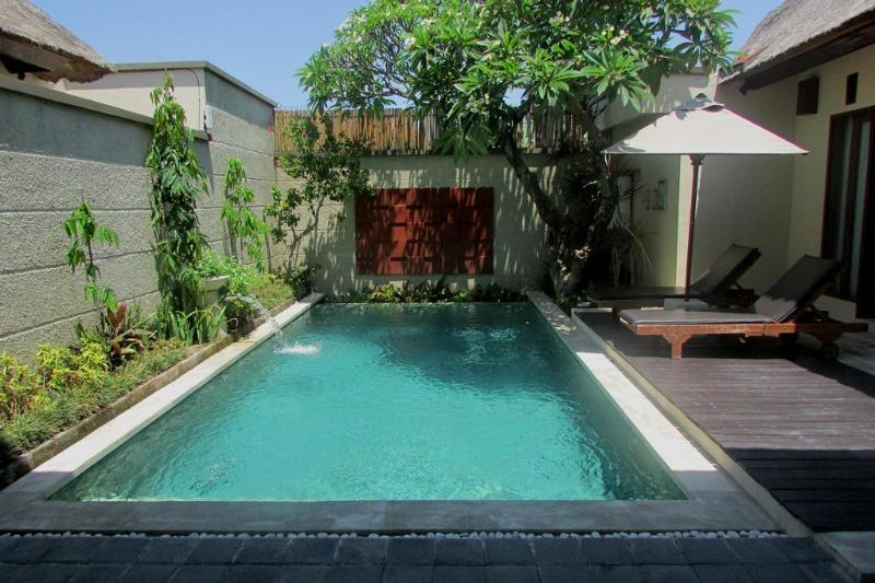 Pool View - Bill, Luxury 2 Bedroom/Bathrooms Seminyak - Seminyak - rentals