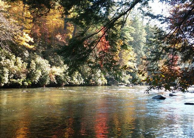 Beautiful Fall River View - 2 Bedroom plus Loft Riverside Retreat on the Toccoa River - Blue Ridge - rentals