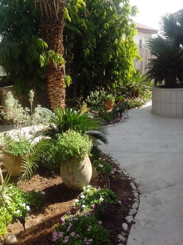 Holiday units in private villa,  close to the sea - Image 1 - Eilat - rentals