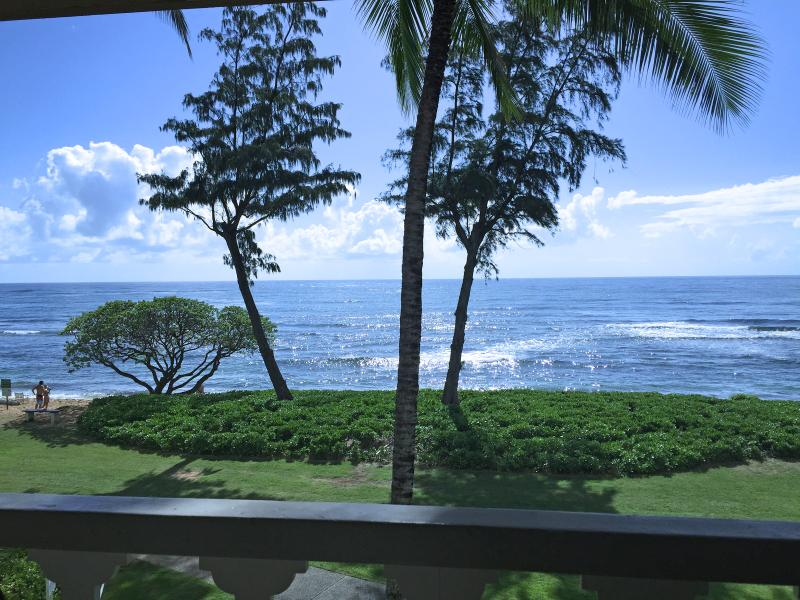 View looking straight from the lanai.  Watch the whales. - Kauai Ocean Front Top Floor Studio Paradise $99 - Kapaa - rentals