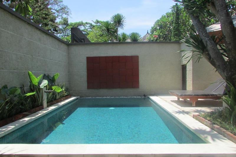 Pool view - Bill, Luxury 1 Bedroom villa, Seminyak - Seminyak - rentals