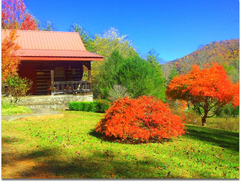 Fall 2014 - Smoky Mtn. Retreat-- Log Cabin--Vacation Rental-Log Cabin Inn - Robbinsville - rentals
