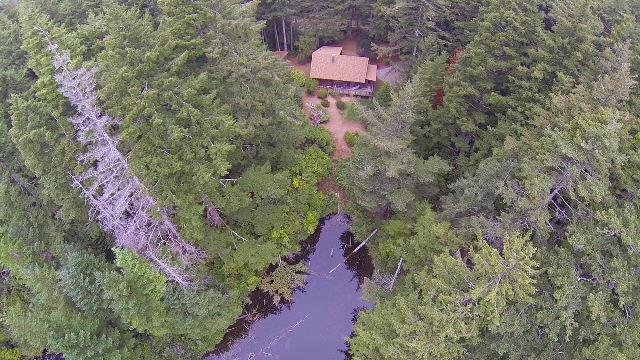 Log Cabin nestled in the woods-sleeps 6 - Image 1 - Bandon - rentals