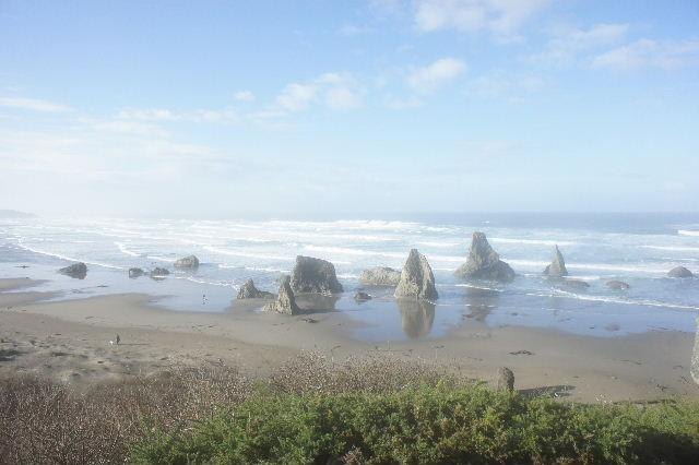 Flora by the Sea- 3bd/3ba - Image 1 - Bandon - rentals