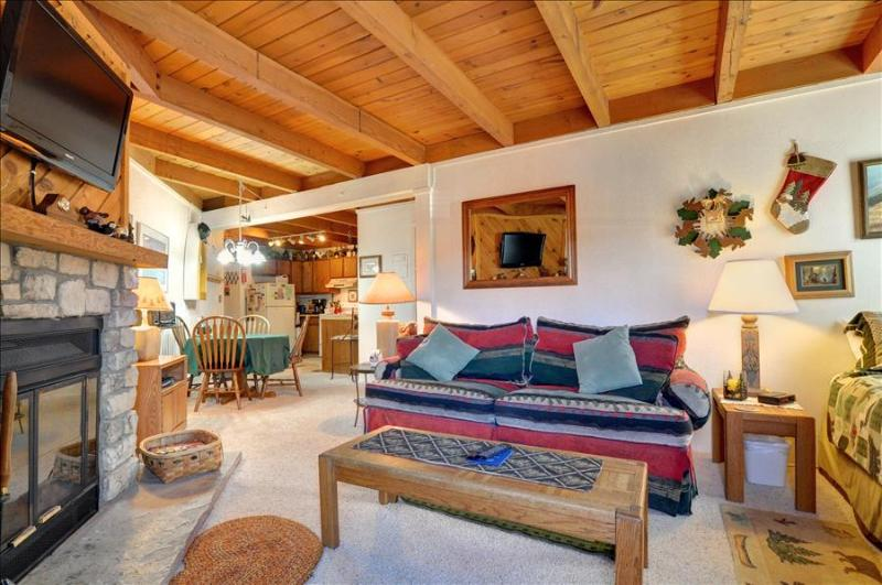 TREEHOUSE I-208: Cozy 1 Bed/1 Bath Condo with King Bed, 7 Ski Areas and a Great - Image 1 - Silverthorne - rentals