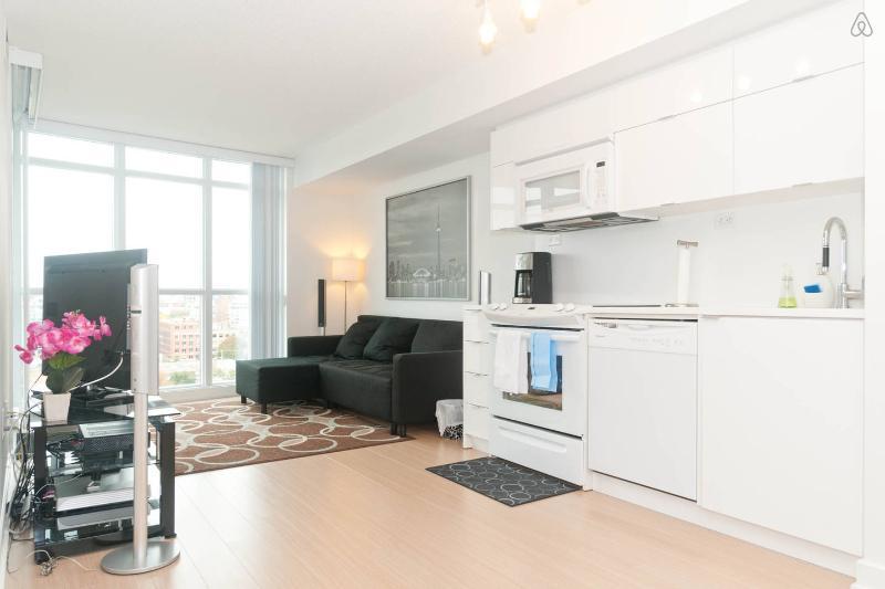 Kitchen & Living Space - Toronto/Condo/Suite/Flat - Toronto - rentals